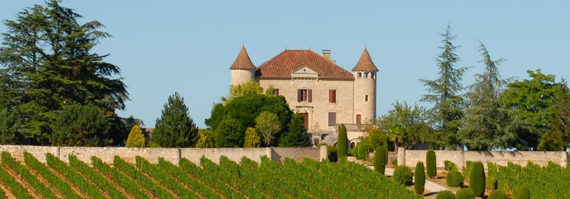 vineyard-640953